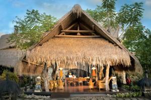 Петте елемента в Бали